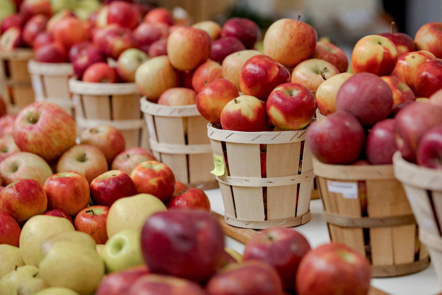 """<a href=""""https://filesource.wostreaming.net/commonwealthofpa/photo/17546_AGRIC_Buy_Local_NK_005.JPG"""" target=""""_blank"""">⇣Download Photo<br></a>Produce is pictured inside Broad Street Market on Thursday, November 21, 2019."""