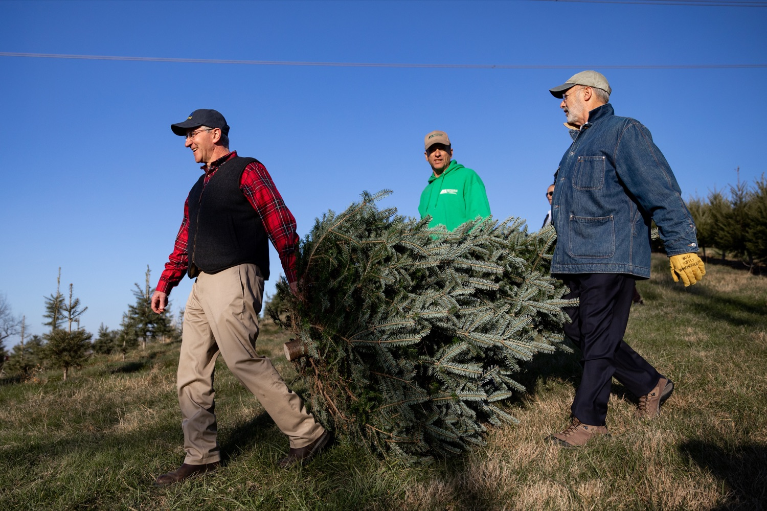 """<a href=""""https://filesource.wostreaming.net/commonwealthofpa/photo/17615_GOV_AGRIC_Christmas_Trees_NK_003.JPG"""" target=""""_blank"""">⇣Download Photo<br></a>Pennsylvania Governor Tom Wolf, right, Pennsylvania Agriculture Secretary Russell Redding, left, and Mark McCurdy, owner of McCurdy's Tree Farm & Landscaping, carry out a Christmas Tree on Monday, November 25, 2019."""