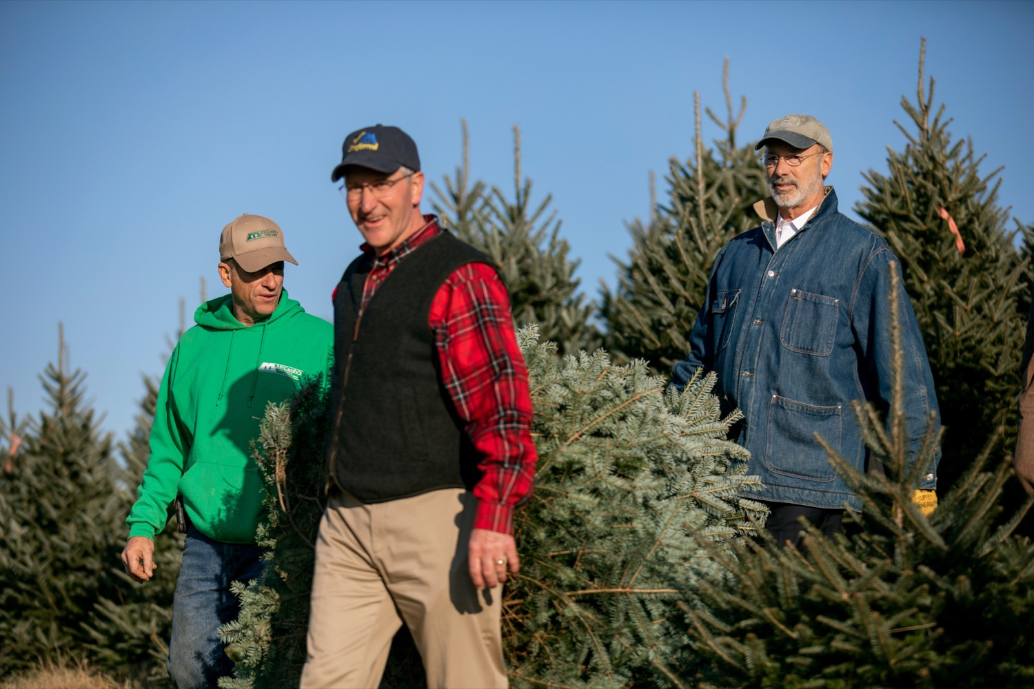 """<a href=""""https://filesource.wostreaming.net/commonwealthofpa/photo/17615_GOV_AGRIC_Christmas_Trees_NK_008.JPG"""" target=""""_blank"""">⇣Download Photo<br></a>Pennsylvania Governor Tom Wolf, right, Pennsylvania Agriculture Secretary Russell Redding, center, and Mark McCurdy, owner of McCurdy's Tree Farm & Landscaping, carry out a Christmas Tree on Monday, November 25, 2019."""