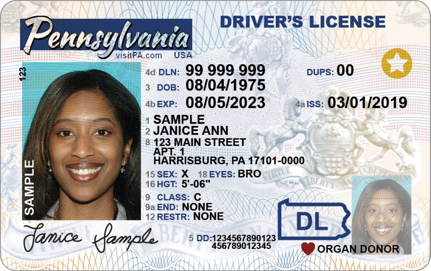 """<a href=""""https://filesource.wostreaming.net/commonwealthofpa/photo/18154_DMV_Sample_Identification_Product.jpg"""" target=""""_blank"""">⇣Download Photo<br></a>Sample Pennsylvania Driver's License"""