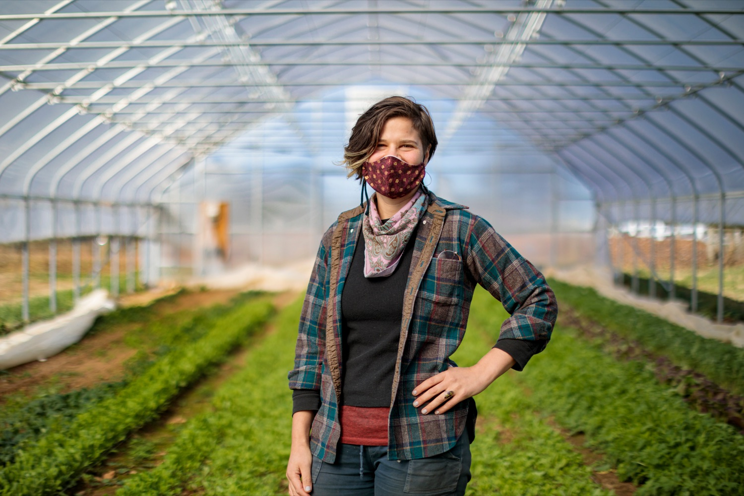 "<a href=""https://filesource.wostreaming.net/commonwealthofpa/photo/18325_AGRIC_Farm_Show_NK_007.jpg"" target=""_blank"">⇣ Download Photo<br></a>Andeana Gonzales 31, farm hand with Crooked Row Farm, poses for a photograph on the farm in Orefield on Friday, November 20, 2020."