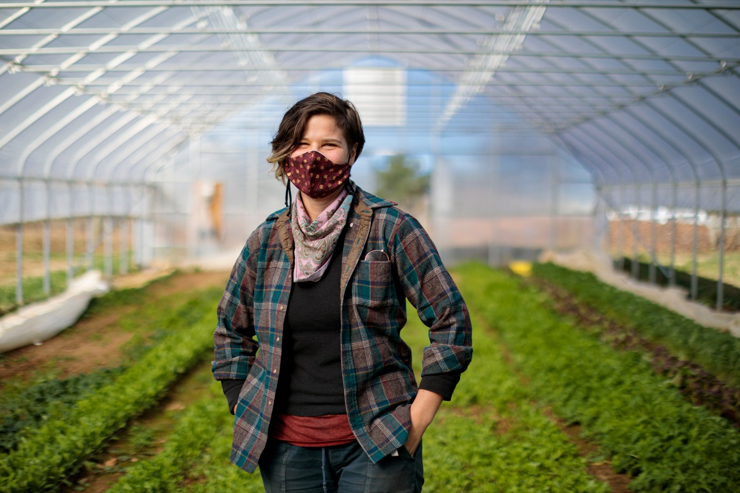 "<a href=""https://filesource.wostreaming.net/commonwealthofpa/photo/18325_AGRIC_Farm_Show_NK_011.jpg"" target=""_blank"">⇣ Download Photo<br></a>Andeana Gonzales 31, farm hand with Crooked Row Farm, poses for a photograph on the farm in Orefield on Friday, November 20, 2020."