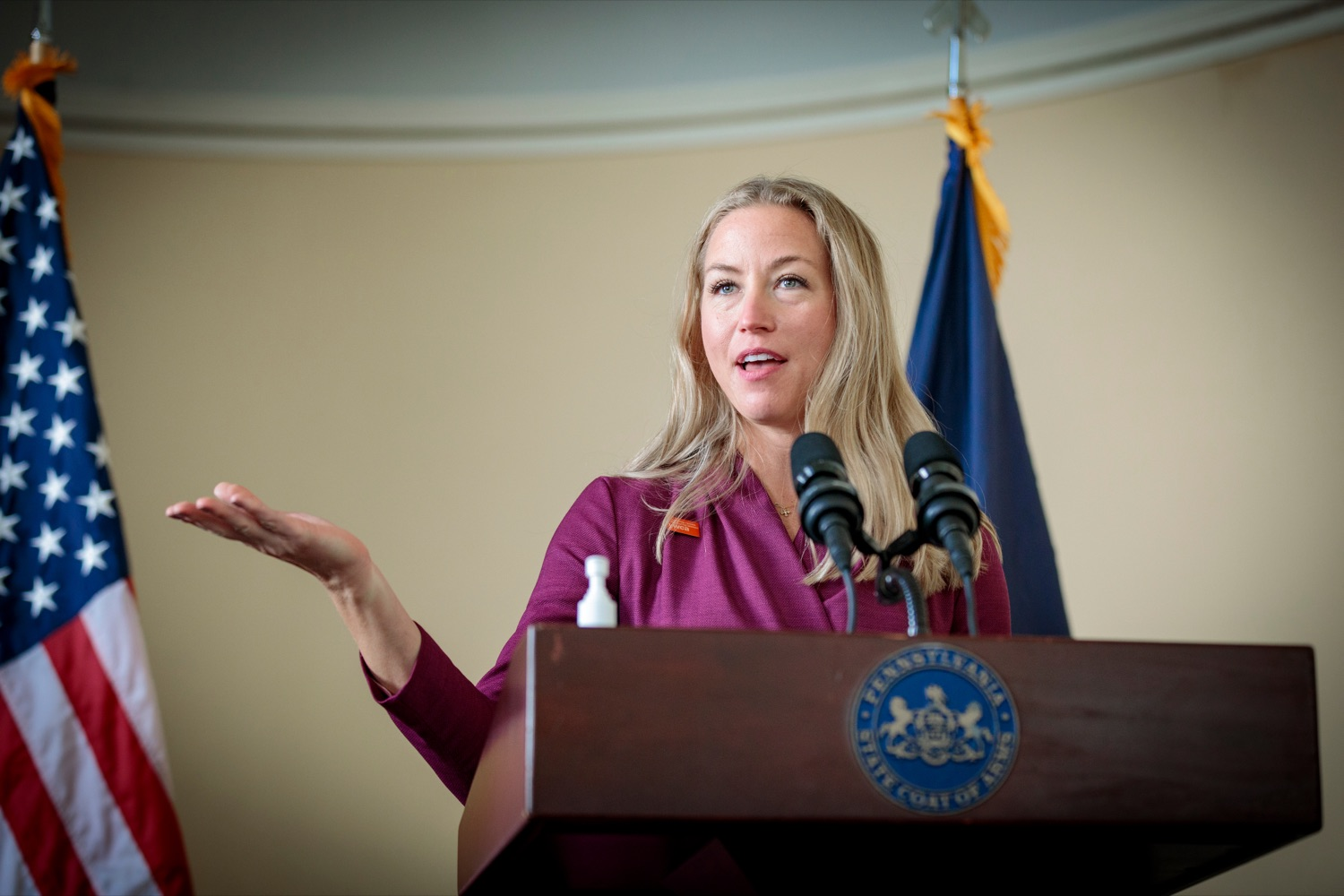 "<a href=""https://filesource.wostreaming.net/commonwealthofpa/photo/18376_DMVA_VET_Connect_NK_014.jpg"" target=""_blank"">⇣ Download Photo<br></a>Mary Quinn, president and CEO of YWCA Greater Harrisburg, speaks during a press conference announcing the launch of PA VETConnect, a statewide outreach initiative designed to better serve the commonwealths nearly 800,000 veterans, on Monday, November 9, 2020."