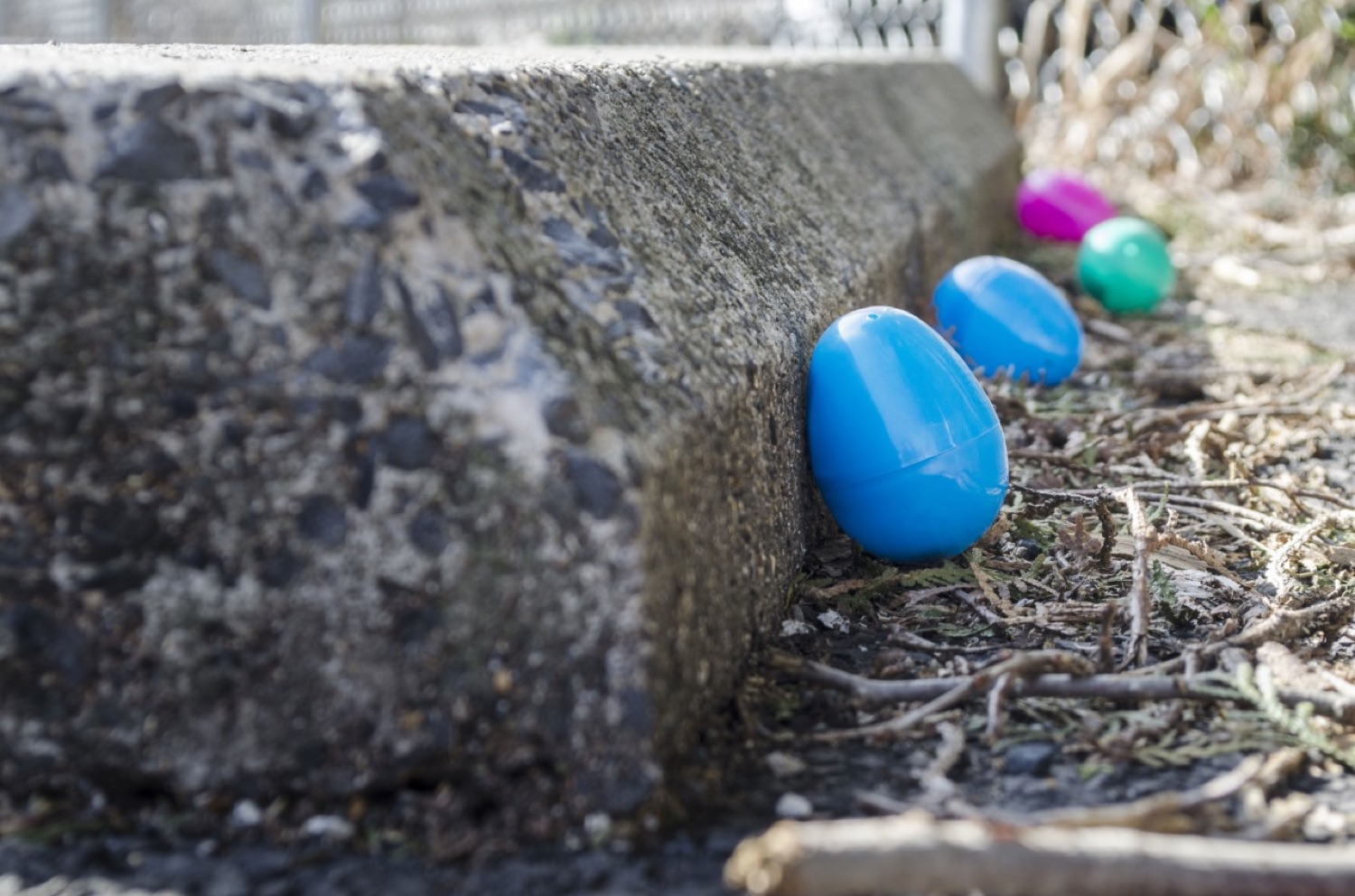 """<a href=""""https://filesource.wostreaming.net/commonwealthofpa/photo/18632_FL_KiddieCityEarlyLearningCenter_Allentown_01.jpg"""" target=""""_blank"""">⇣Download Photo<br></a> Virtual Egg Hunt with the First Lady"""