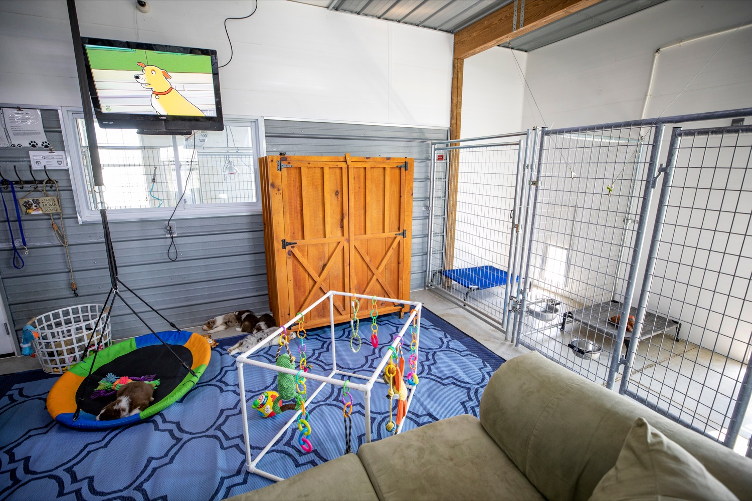 "<a href=""https://filesource.wostreaming.net/commonwealthofpa/photo/18648_AGRIC_Dog_Law_NK_012.jpg"" target=""_blank"">⇣ Download Photo<br></a>The interior of Creekside Aussies, a compliant non-commercial breeding kennel, is pictured in Annville on Thursday, April 8, 2021."