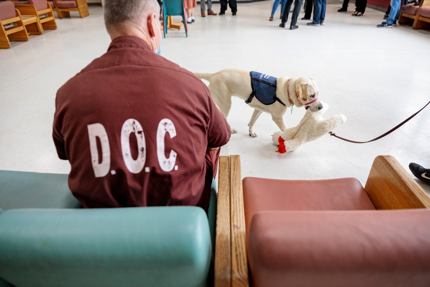 """<a href=""""https://filesource.wostreaming.net/commonwealthofpa/photo/18779_DOC_PostCovid_NK_003.jpg"""" target=""""_blank"""">⇣Download Photo<br></a>Inmates work with service dogs as part of """"Canine Partners for Life"""" during a media tour, where staff and inmates discussed life in a congregate setting during the pandemic, how the DOC responded to COVID-19, and next steps for the department as restrictions loosen and in-person visitation is safely re-introduced throughout the state prison system, on Wednesday, June 2, 2021."""