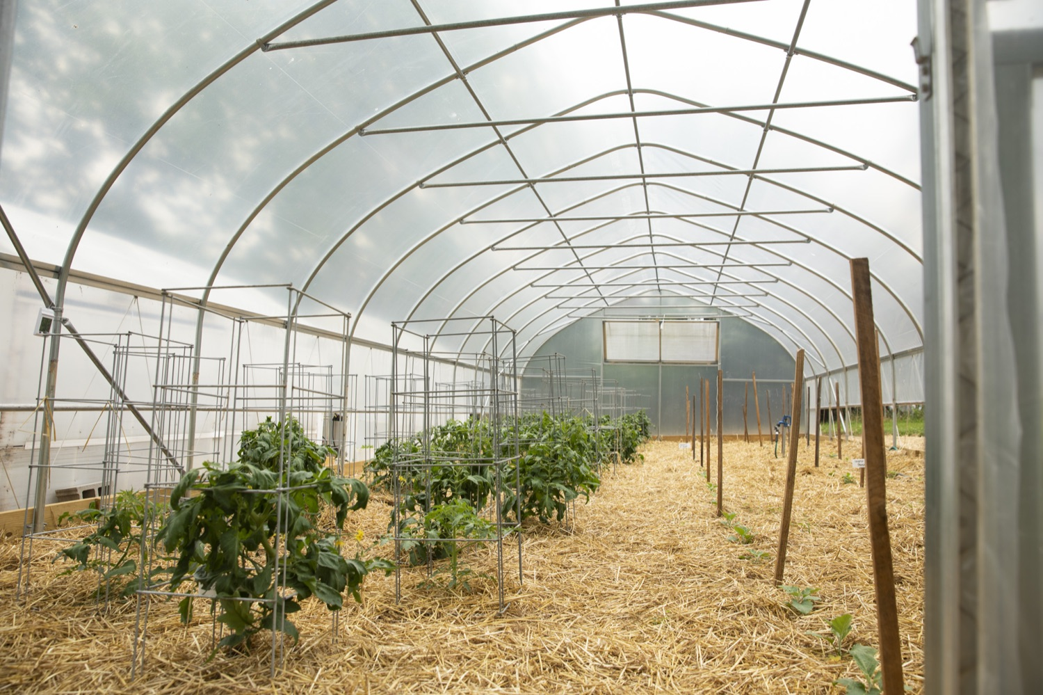 """<a href=""""https://filesource.wostreaming.net/commonwealthofpa/photo/18787_agric_urbangardens_04.jpg"""" target=""""_blank"""">⇣Download Photo<br></a>The Wolf Administration has invested $1 million in building infrastructure for food sovereignty and security in urban areas across Pennsylvania, at York Fresh Food Farms on June 3, 2021."""