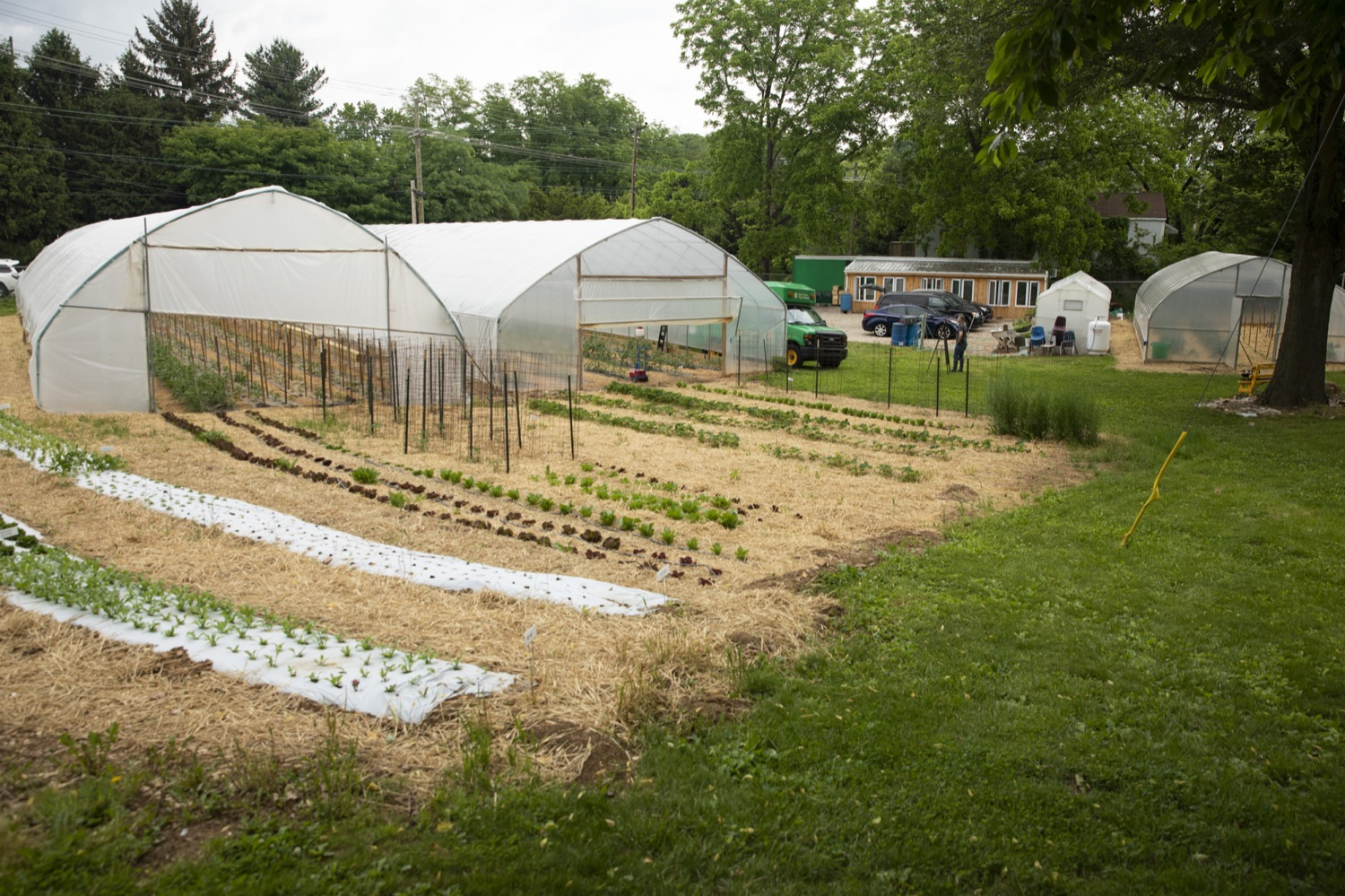 """<a href=""""https://filesource.wostreaming.net/commonwealthofpa/photo/18787_agric_urbangardens_05.jpg"""" target=""""_blank"""">⇣Download Photo<br></a>The Wolf Administration has invested $1 million in building infrastructure for food sovereignty and security in urban areas across Pennsylvania, at York Fresh Food Farms on June 3, 2021."""