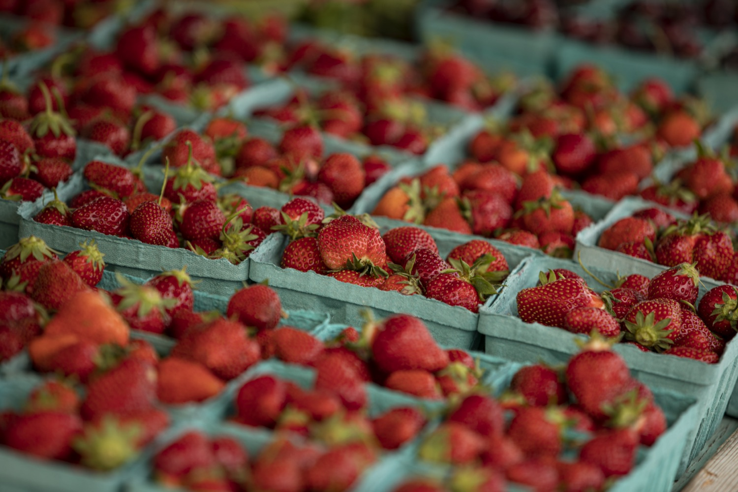 """<a href=""""https://filesource.wostreaming.net/commonwealthofpa/photo/18790_Agr_Farm_Market_12.jpg"""" target=""""_blank"""">⇣Download Photo<br></a>At the Open-Air Farmers Market at the Farm Show Complex in Harrisburg today, Wolf Administration officials reminded Pennsylvanias low-income seniors and WIC recipients to obtain and use their vouchers from the Pennsylvania Farmers Market Nutrition Program (FMNP) to purchase fresh, local fruits, vegetables, and herbs from FMNP-approved farmers at farmers markets and farm stands across the commonwealth."""