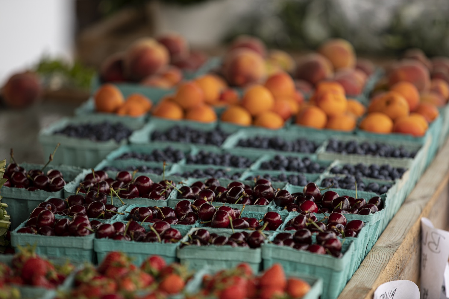 """<a href=""""https://filesource.wostreaming.net/commonwealthofpa/photo/18790_Agr_Farm_Market_13.jpg"""" target=""""_blank"""">⇣Download Photo<br></a>At the Open-Air Farmers Market at the Farm Show Complex in Harrisburg today, Wolf Administration officials reminded Pennsylvanias low-income seniors and WIC recipients to obtain and use their vouchers from the Pennsylvania Farmers Market Nutrition Program (FMNP) to purchase fresh, local fruits, vegetables, and herbs from FMNP-approved farmers at farmers markets and farm stands across the commonwealth."""