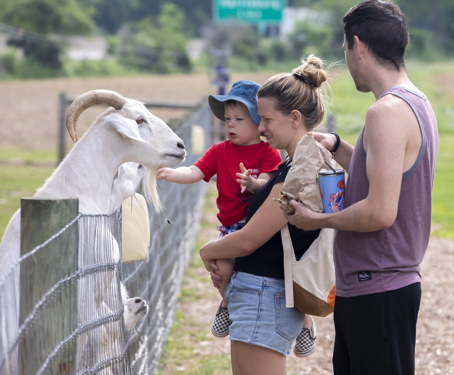 """<a href=""""https://filesource.wostreaming.net/commonwealthofpa/photo/18791_agric_AGcareer_00006.jpg"""" target=""""_blank"""">⇣Download Photo<br></a>Wolf Administration to Families: Kids are the Future of Pennsylvania Agriculture, Explore Hands-On Ag Opportunities this Summer"""