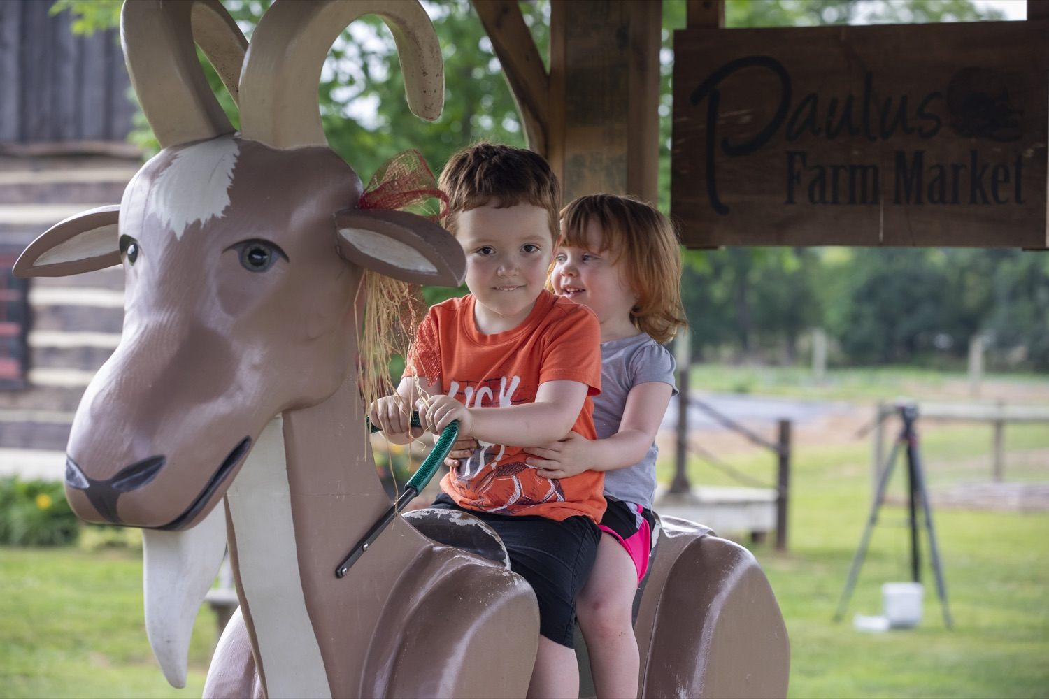 """<a href=""""https://filesource.wostreaming.net/commonwealthofpa/photo/18791_agric_AGcareer_00032.jpg"""" target=""""_blank"""">⇣Download Photo<br></a>Wolf Administration to Families: Kids are the Future of Pennsylvania Agriculture, Explore Hands-On Ag Opportunities this Summer"""